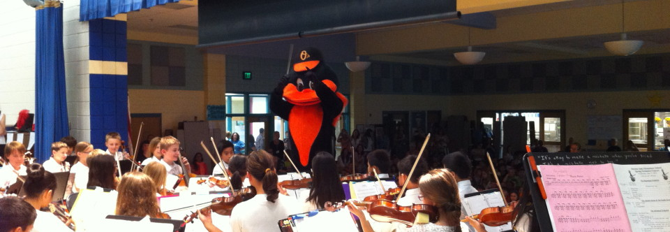 DOES Orchestra